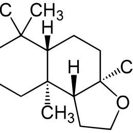 Cây thanh yên