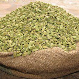 Bạch đậu khấu Guatemala