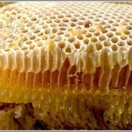 Sáp tổ ong